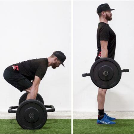 Fitness/training books